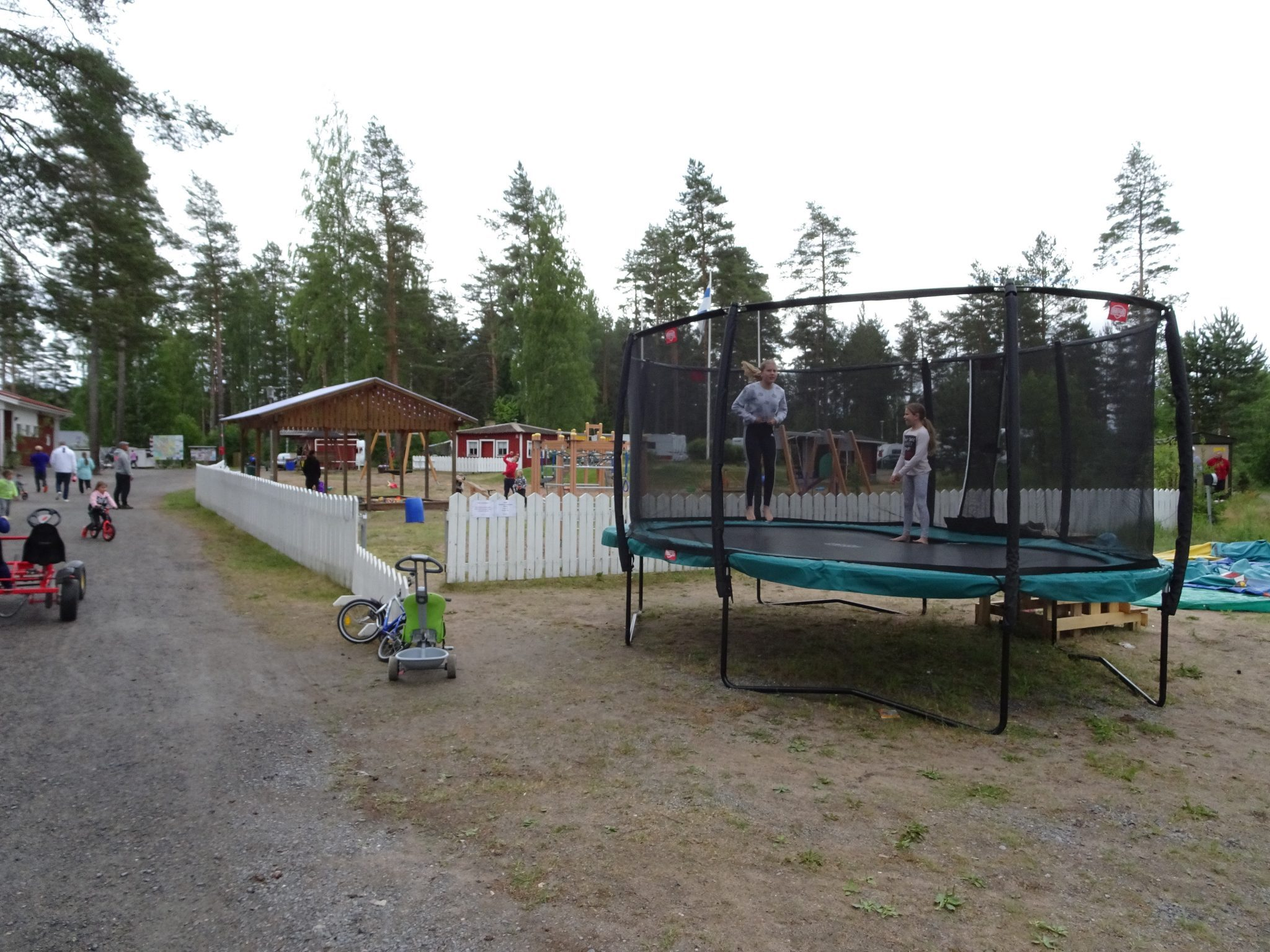 Playing children in Vankkurimännikkö